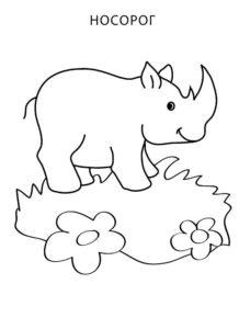 Носорог картинки раскраски (18)