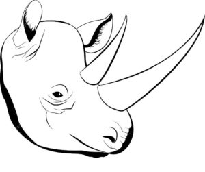 Носорог картинки раскраски (22)