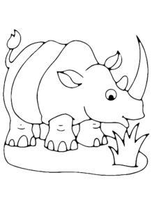 Носорог картинки раскраски (23)
