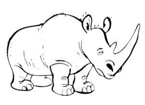 Носорог картинки раскраски (24)