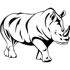 Носорог картинки раскраски (33)