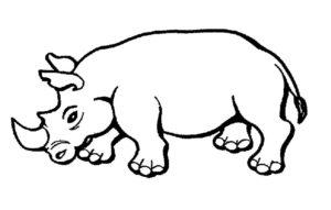 Носорог картинки раскраски (34)