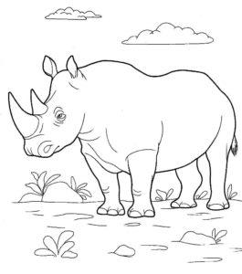 Носорог картинки раскраски (4)