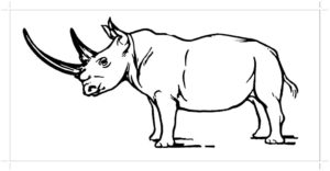 Носорог картинки раскраски (43)