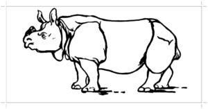Носорог картинки раскраски (44)