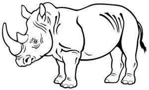 Носорог картинки раскраски (49)