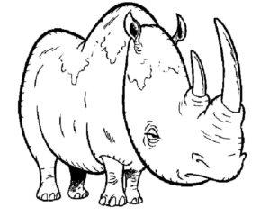 Носорог картинки раскраски (5)