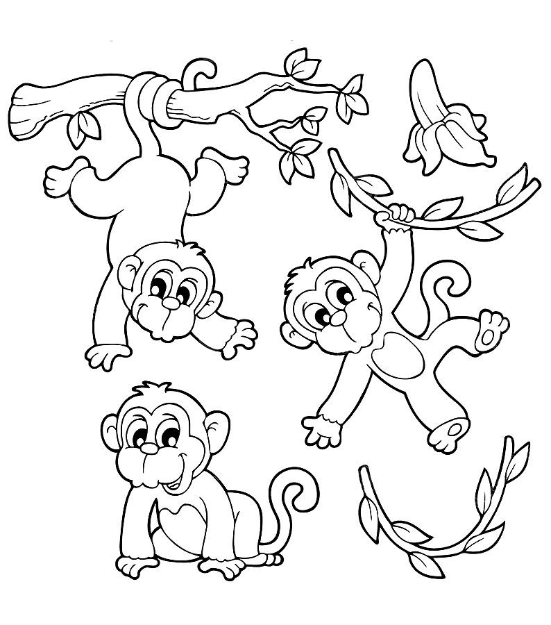 Картинки разукрашки с обезьянками
