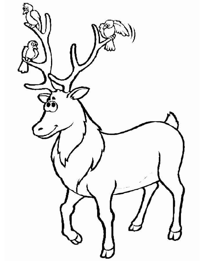 Новогодний олень картинки раскраски, объемную открытку бумаги