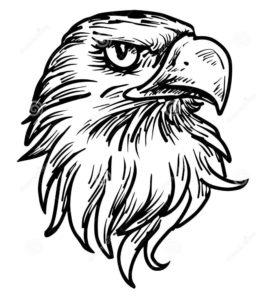 Орел картинки раскраски (12)