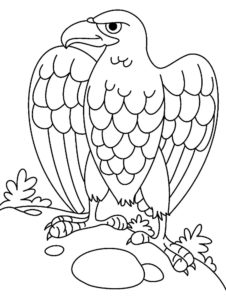 Орел картинки раскраски (16)