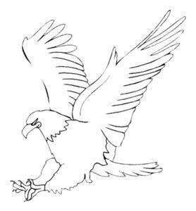 Орел картинки раскраски (19)