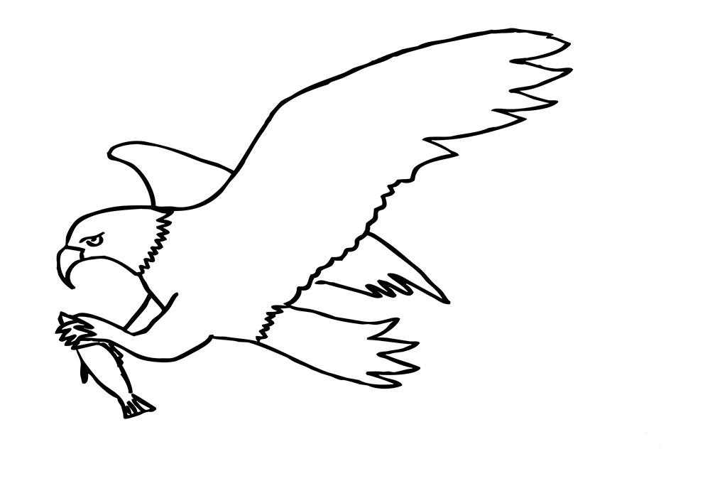 Картинки разукрашки орел