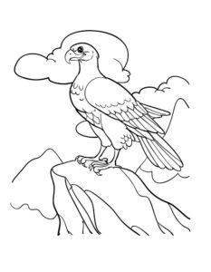 Орел картинки раскраски (31)