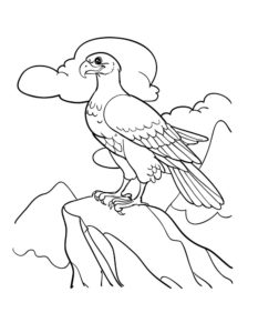 -картинки-раскраски-31-233x300 Орел
