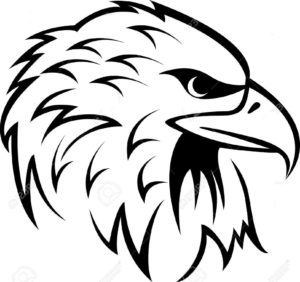 Орел картинки раскраски (37)