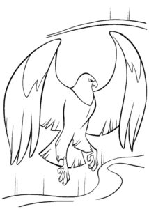 Орел картинки раскраски (38)