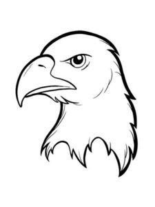 Орел картинки раскраски (46)