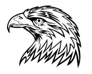 Орел картинки раскраски (49)