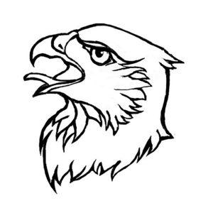 Орел картинки раскраски (8)