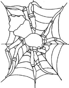 Паучки и пауки картинки раскраски (20)
