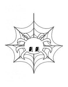 Паучки и пауки картинки раскраски (27)