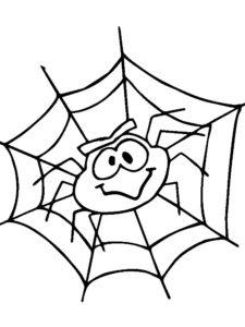 Паучки и пауки картинки раскраски (7)