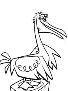 Пеликан картинки раскраски (20)