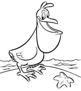 Пеликан картинки раскраски (3)