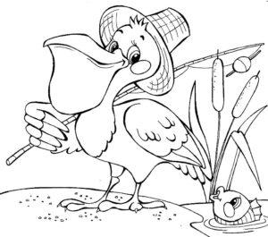 Пеликан картинки раскраски (4)