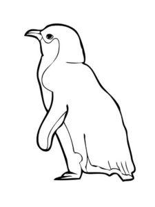 -картинки-раскраски-31-225x300 Пингвин
