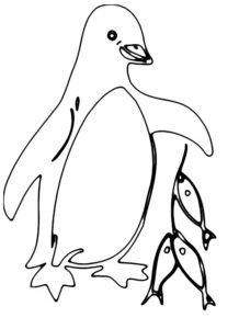 -картинки-раскраски-47-218x300 Пингвин