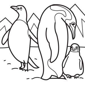 -картинки-раскраски-51-300x300 Пингвин