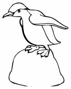 -картинки-раскраски-57-240x300 Пингвин