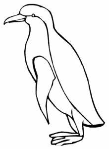 -картинки-раскраски-58-220x300 Пингвин