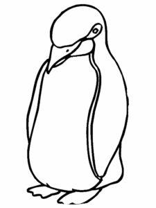 -картинки-раскраски-59-225x300 Пингвин