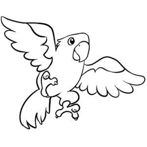 Попугай ара картинки раскраски (1)