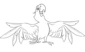 Попугай ара картинки раскраски (13)