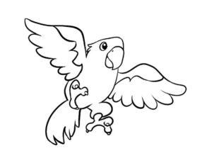 Попугай раскраска картинки раскраски (2)