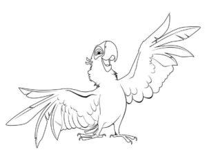 Попугай раскраска картинки раскраски (4)
