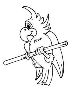 -раскраска-картинки-раскраски-6-233x300 Попугай ара