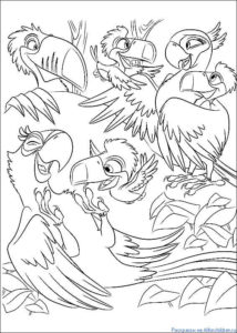 Попугай раскраска картинки раскраски (8)