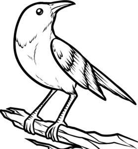 Птицы жаворонок картинки раскраски (13)