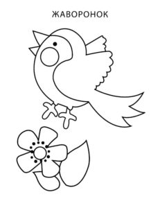 Птицы жаворонок картинки раскраски (14)