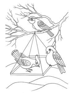 Птицы зимой картинки раскраски (3)
