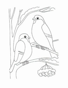 -зимой-картинки-раскраски-5-233x300 Птицы зимой