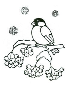 Птицы зимой картинки раскраски (8)