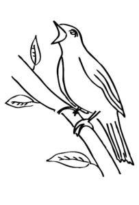 Птицы соловей картинки раскраски (1)