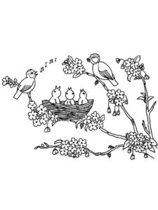 Птицы соловей картинки раскраски (11)