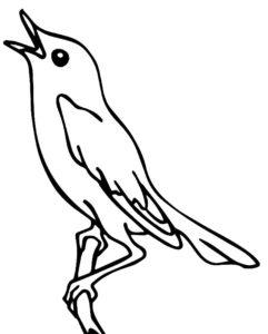 Птицы соловей картинки раскраски (2)